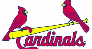 St. Louis Cardinals Birds On Bat